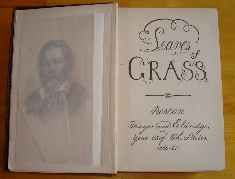 Leaves of grass sexuality